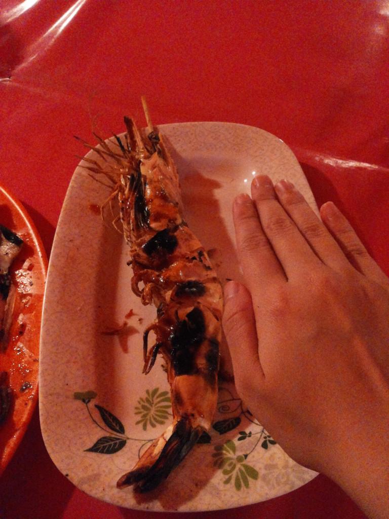 手掌般大的蝦