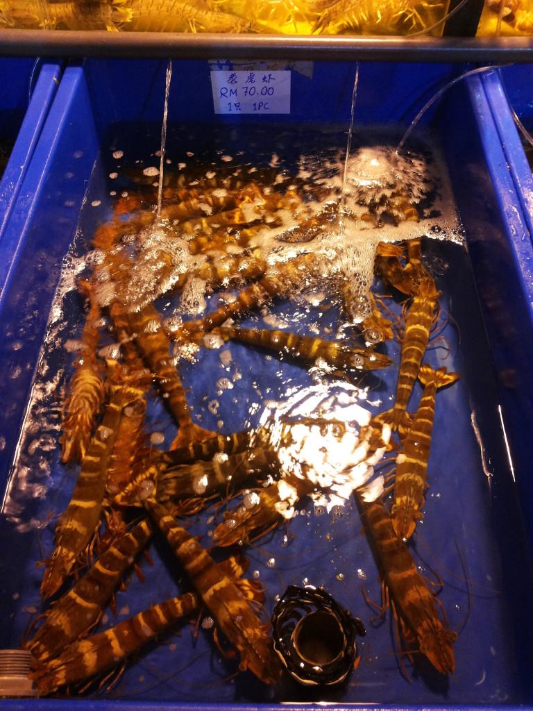 新鮮老虎蝦