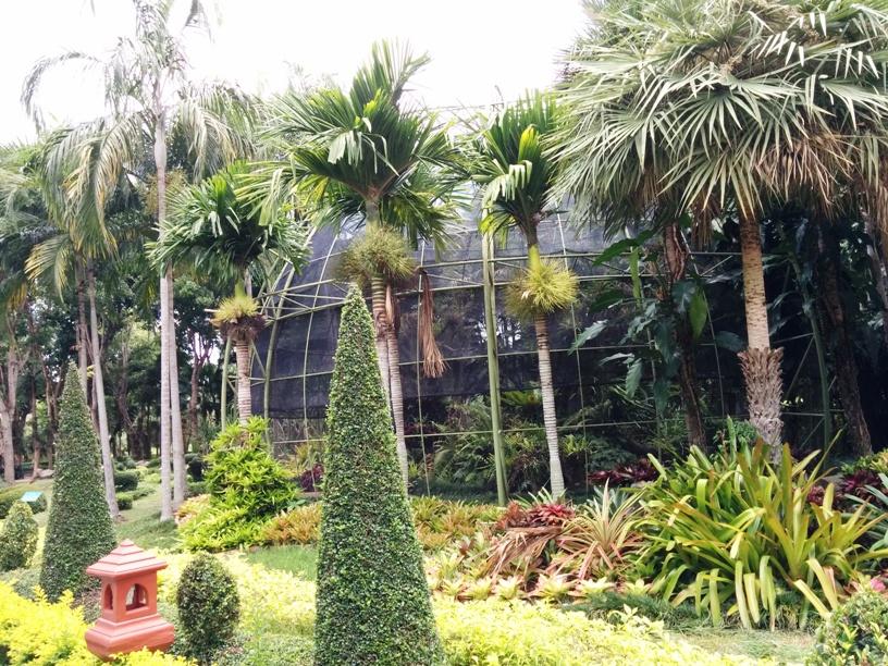 室內植物園-6