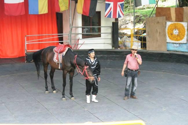 第一匹馬亮相