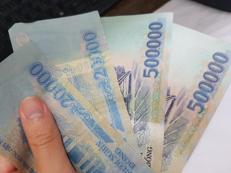 vitenam_dollar