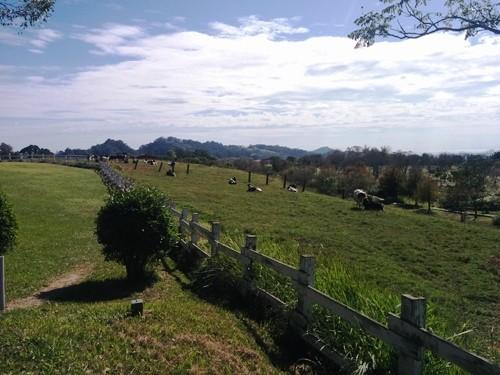 台東景點-初鹿牧場