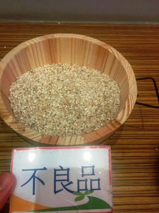 介紹池上米