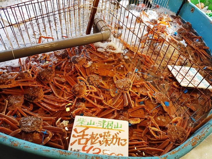滿滿的松葉蟹
