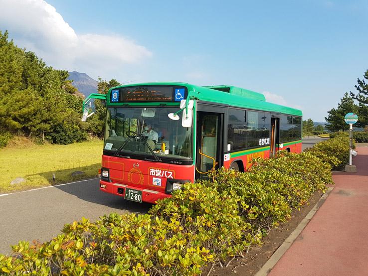 這就是觀光巴士
